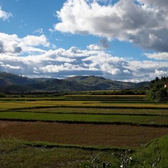 Wolken und Reis